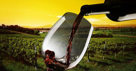 Glas mit Rotwein vor Weinbergen